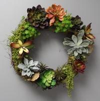 Succulent Wreaths Workshop