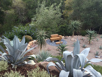 Park Hill - A Garden with Succulents, Views, and Playful Stone Sculptures-5