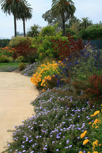 Channel Drive - A Garden at the Beach-17