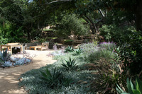 Mission Canyon - A garden Under the Oaks-9