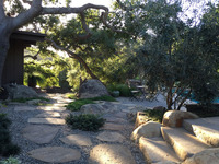Mission Canyon - A garden Under the Oaks-10