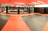 Main Mat Area