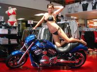 Harley Davidson Contest-10