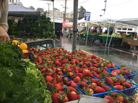 Divisadero Farmers' Market