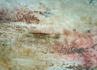 TexSton Stucco Gallery-14