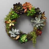 Succulent Wreaths Workshop