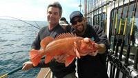 Rockfish Limits at Santa Rosa Island-1