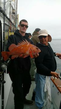 Rockfish Limits at Santa Rosa Island-3