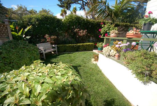 Paradise Cottage Garden
