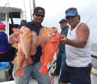 Limits at the Channel Islands-Coral Sea-5