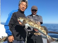 Lingcod Bite on the Coral Sea!-12
