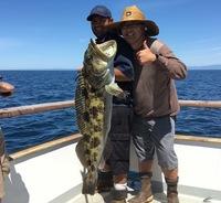 Coral sea – beautiful day scratch fishing -2