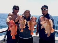 Coral sea – beautiful day scratch fishing -3