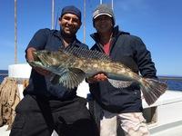 Coral sea – beautiful day scratch fishing -4