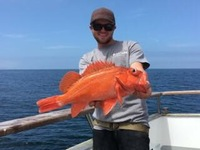 Coral Sea Killer day at Santa Rosa Island-7
