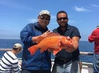 Coral Sea Killer day at Santa Rosa Island-11