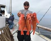 Coral Sea Killer day at Santa Rosa Island-14