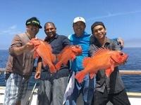Coral Sea Killer day at Santa Rosa Island-23