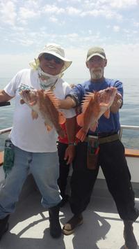 Coastal 1/2 day fishing-4