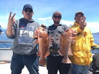Steady fishing at Santa Rosa Island-8