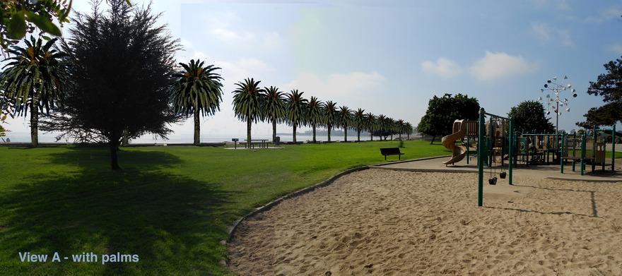 Simulated Canary Island Palms