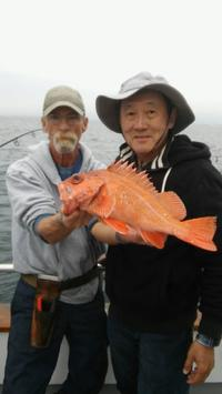 More 1/2 day Rockfish Limits-2