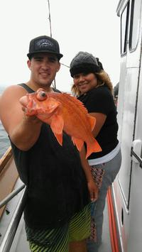 More 1/2 day Rockfish Limits-3