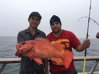 1/2 day Fishing in Santa Barbara-3