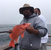1/2 day Fishing in Santa Barbara-12