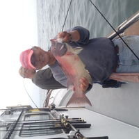 1/2 Day fishing in Santa Barbara-2