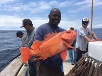 Coral Sea 3/4 Day 6.12.16-4
