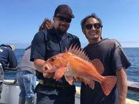 Coral Sea 3/4 day 6.13.16-5