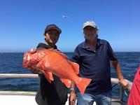 Coral Sea 3/4 Day 6.14.16-6