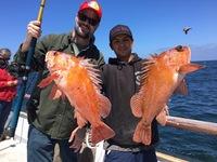 Coral Sea 3/4 Day 6.14.16-7
