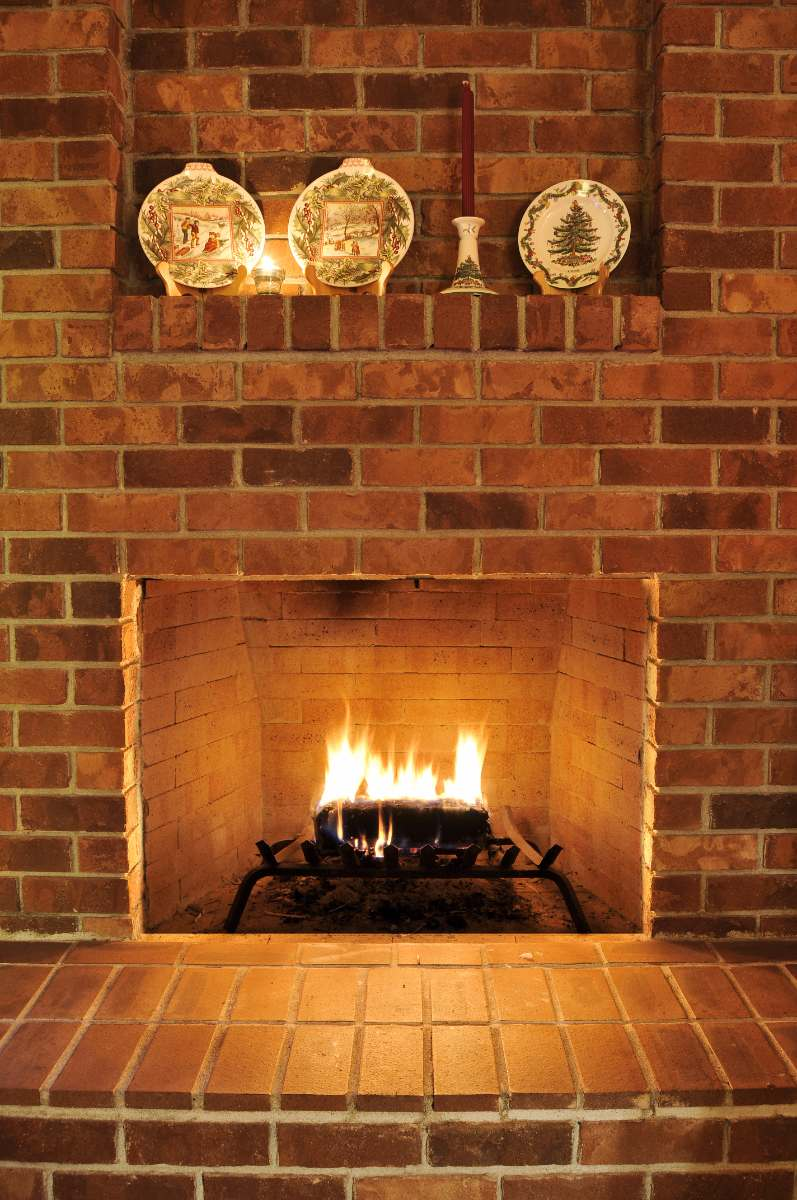 Eliminating Rodent Odors Entry And Nesting In Fireplaces