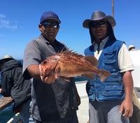 Coral Sea 1/2 day 6.19.16-7