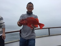 Coral Sea 6.24.16 1/2 day-5