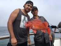 Coral Sea 6.26.16 1/2 Day -7