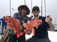 Coral Sea 6.26.16 1/2 Day -8