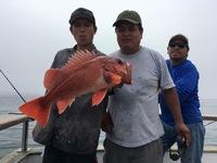 Coral Sea 6.26.16 1/2 Day -10
