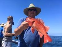 Coral Sea 7.3.16 1/2 day-10
