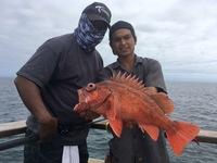 Coral Sea 7.4.16 3/4 day-13