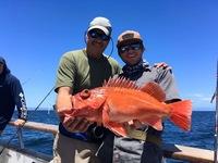 Coral Sea 7.9.16 3/4 day-14