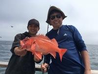 Coral Sea 7.9.16 3/4 day-15