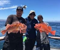 Coral Sea 7.9.16 3/4 day-16