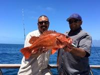 Coral Sea 7.10.16 1/2 day-5