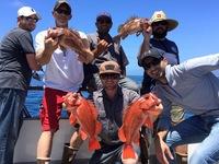 Coral Sea 7.10.16 1/2 day-6