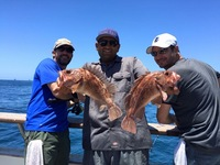 Coral Sea 7.10.16 1/2 day-10