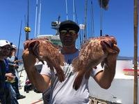 Coral Sea 7.10.16 1/2 day-11