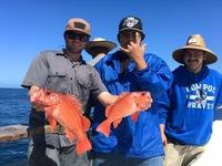 Coral Sea 7.10.16 1/2 day-13